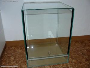 Kleines Terrarium wird als Inkubator umfunktioniert
