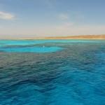Korallenbaenke bei Giftun Island Aegypten Rotes Meer Egypt Red Sea