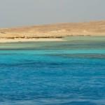 Korallenbaenke vor Giftun Island Aegypten Egypt Rotes Meer Red Sea
