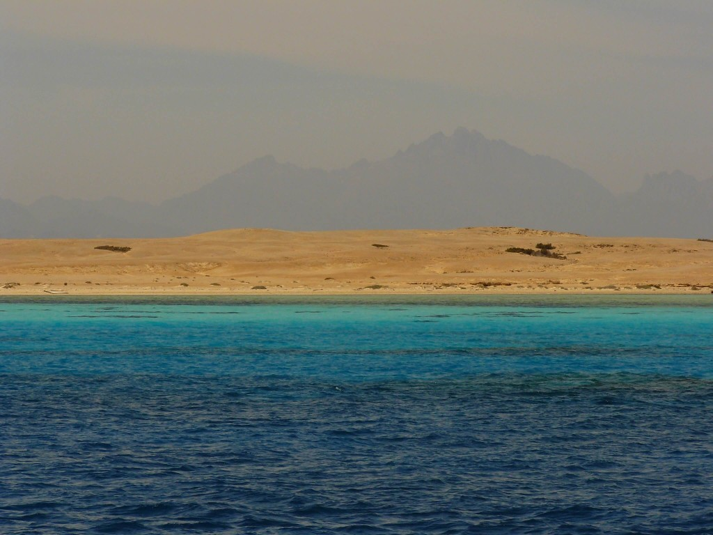 Rotes Meer Aegypten Red Sea Egypt
