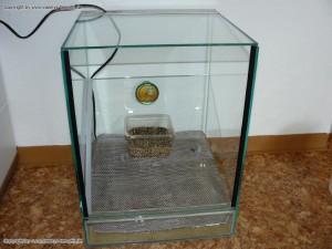 selbstgebauter Inkubator Brutkasten